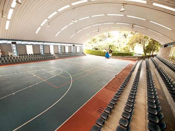 Basketball and Volleyball Court